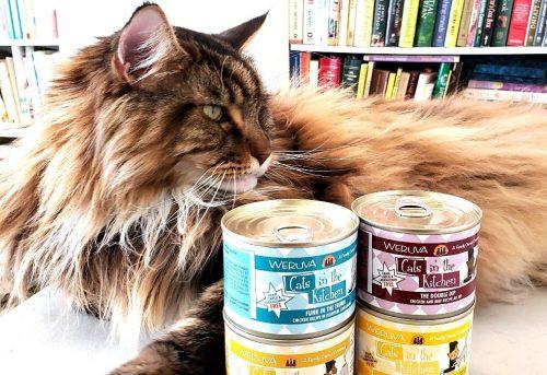 Magellan-Create-With-Joy.com-Weruva-Cats-In-The-Kitchen-2