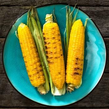 Corn On The Cob - Blue Plate