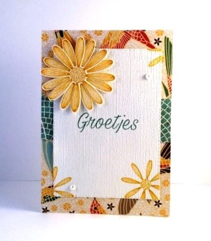 Daisy Lane Card