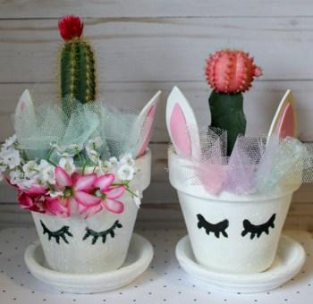 Unicorn Cactus
