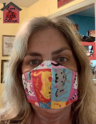 Kristie - Face Mask For Dummies