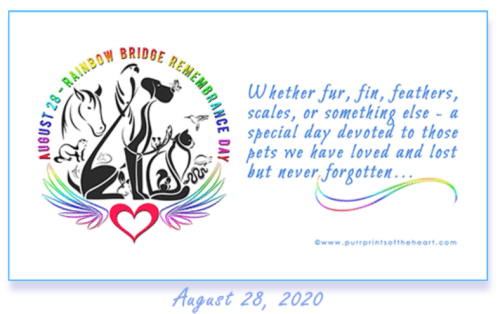 Rainbow Remembrance Day 2020