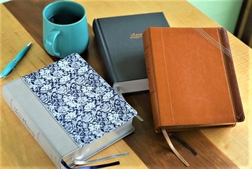 NIV Verse Mapping Bibles
