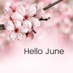 Hello June Flowers