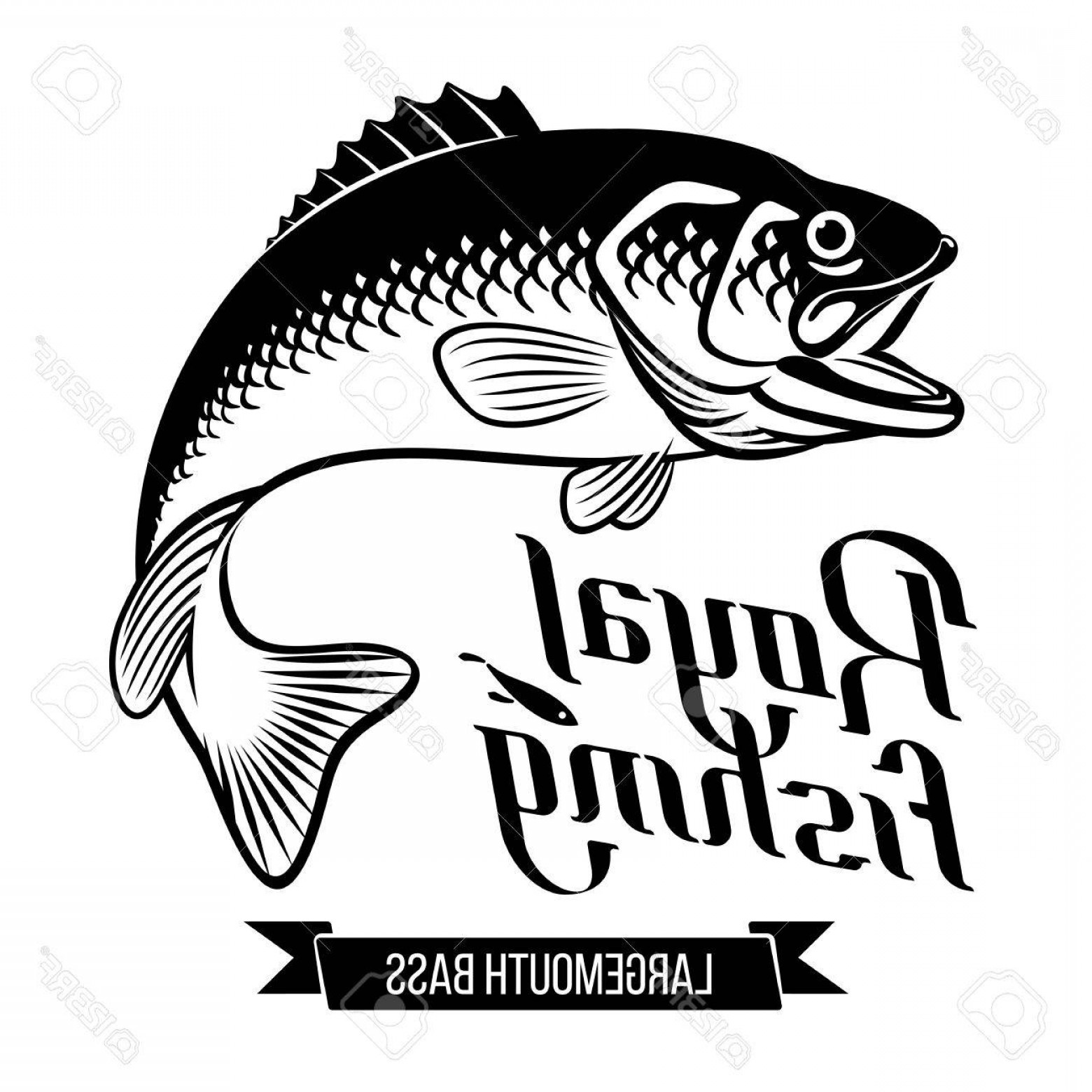Bass Fish Skeleton Vector