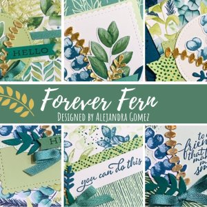 Forever Fern Class Class to-go