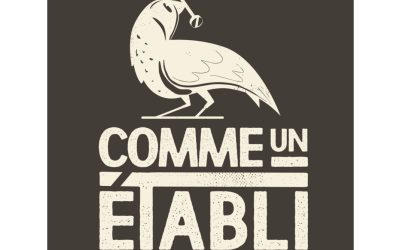 Creation-Stephane-Pennec-Comme-Un-Etabli-V2-1