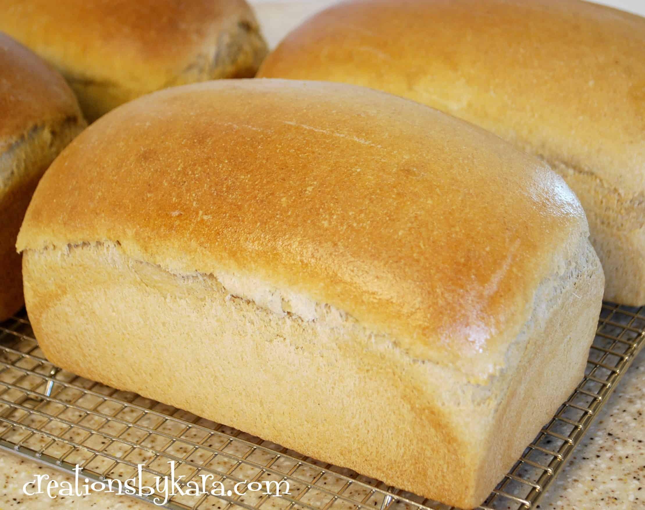 Soft Wheat Bread
