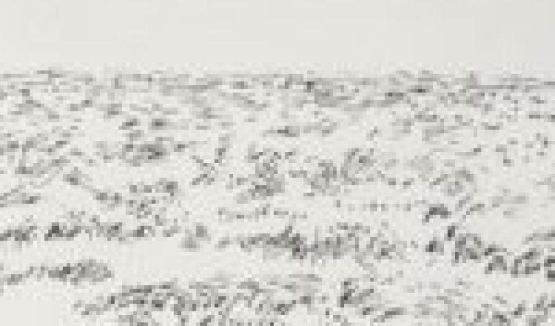 Sea + Sand