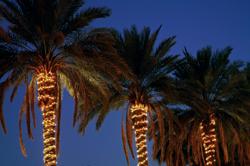 fun tropical outdoor lighting ideas for
