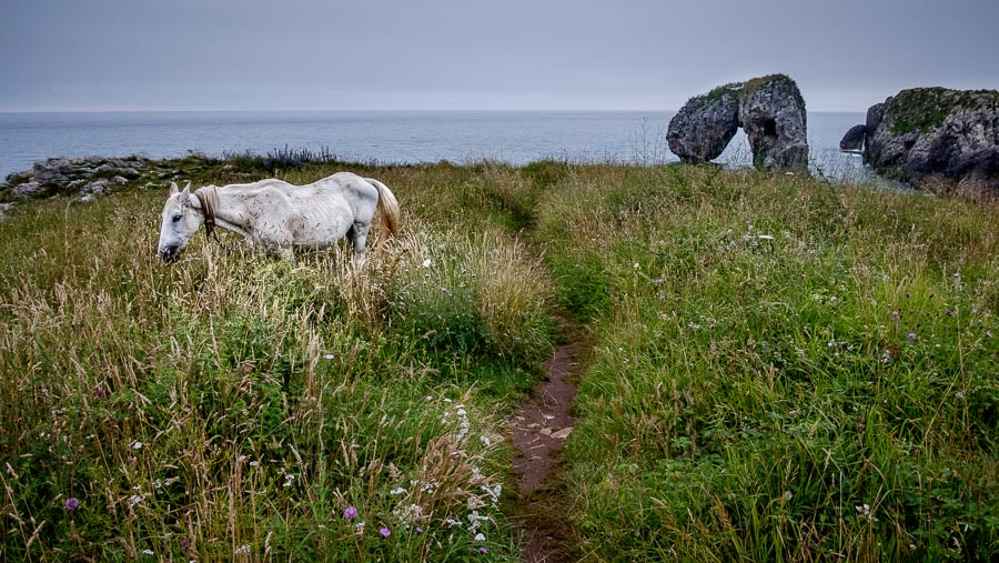 Landscape photo with horse and rock arch taken in Asturias, Spain