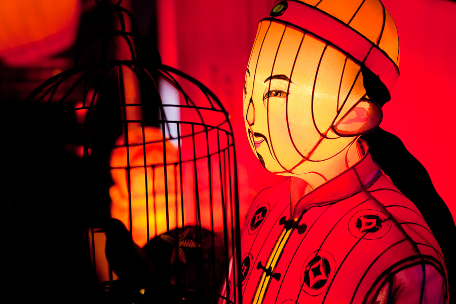 Moody color photo taken at Auckland Lantern festival