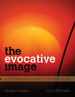 The Evocative Image ebook