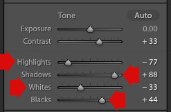 Lightroom Basic panel sliders