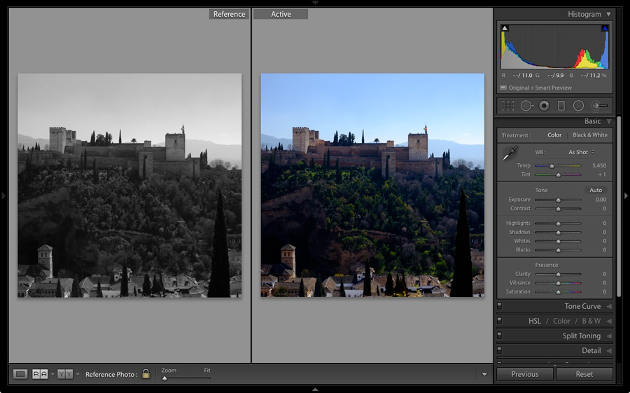 Reference View in Lightroom Develop module