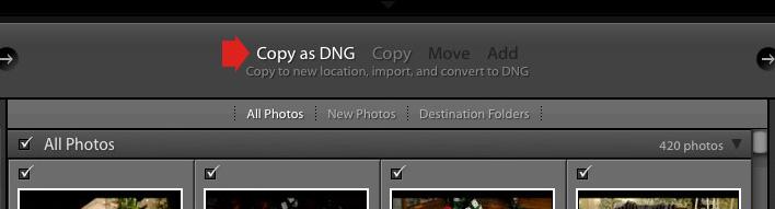 Copy as DNG