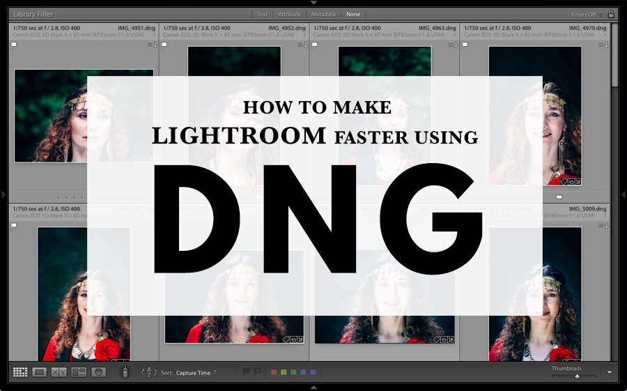 The Lightroom Reference View