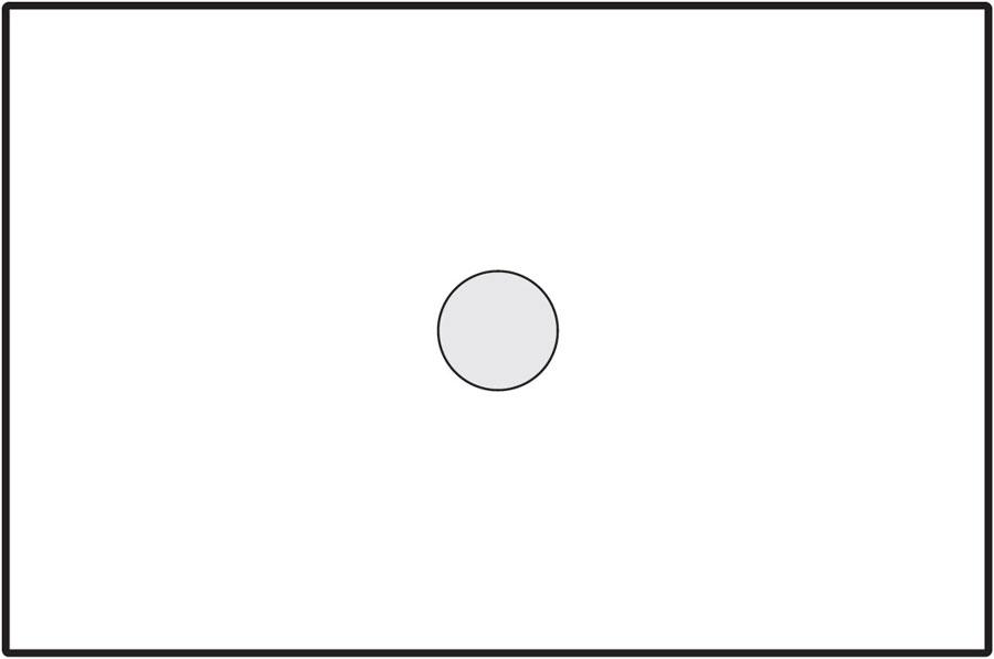 Diagram showing area of spot metering mode