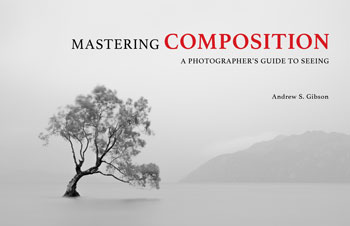 Mastering Composition Book One ebook