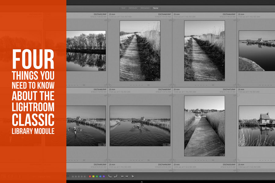 Four Things You Need To Know About the Lightroom Classic Library Module