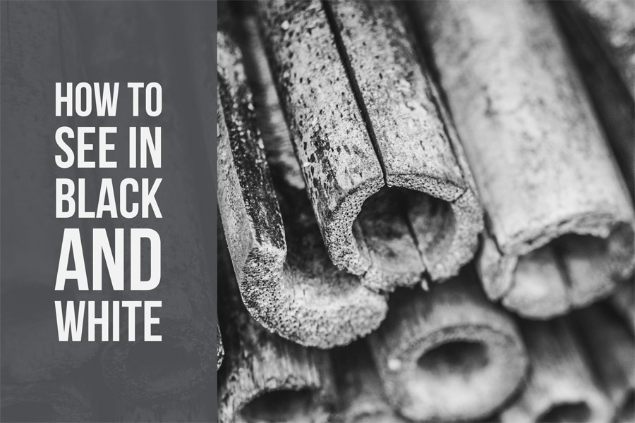 How To See In Black and White