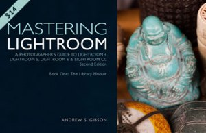 Mastering Lightroom: Book One –The Library Module