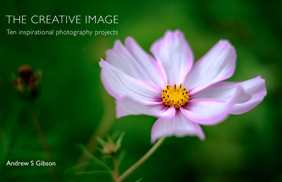 The Creative Image ebook
