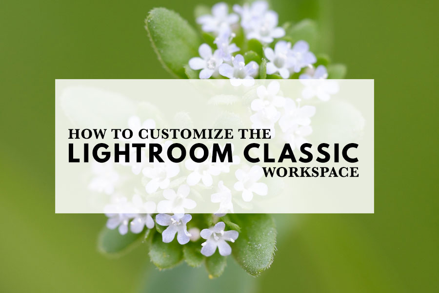 How To Customize The Lightroom Classic Workspace