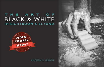 The Art of Black and White in Lightroom and Beyond