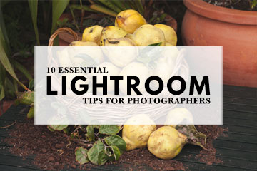 10 Essential Lightroom Tips For Photographers