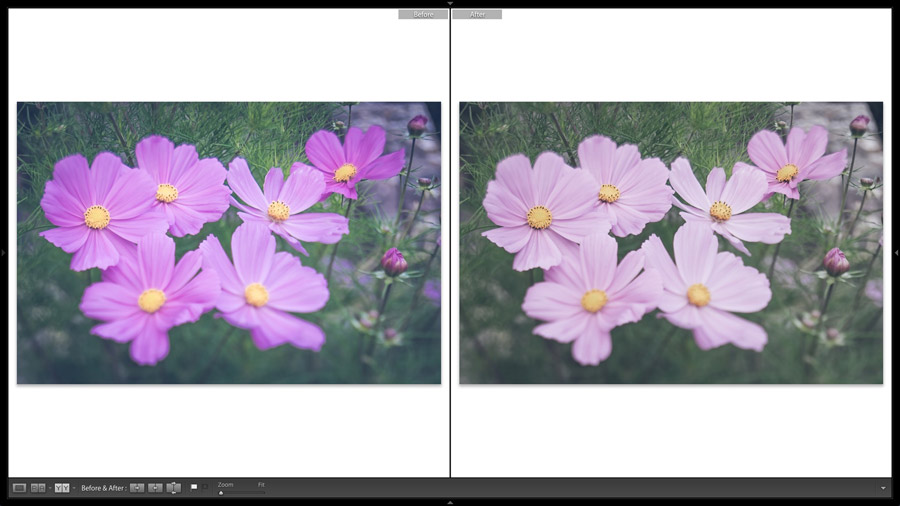 Comparing Snapshots in Lightroom Classic