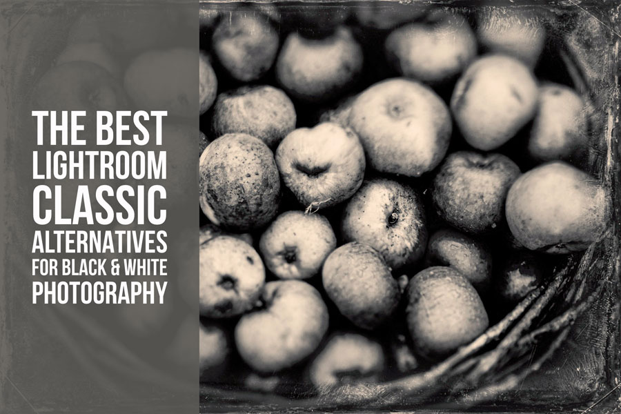 The Best Lightroom Classic Alternatives for Black & White Photography