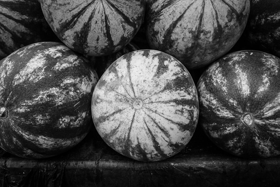 Black and white photo of watermelons