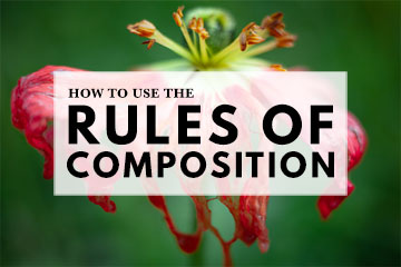 How To Use The Rules Of Composition