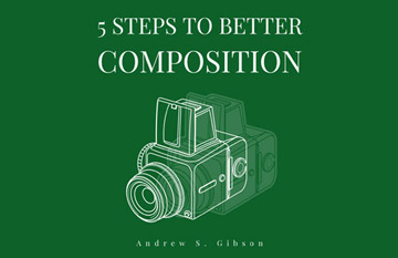 5 Steps to Better Composition