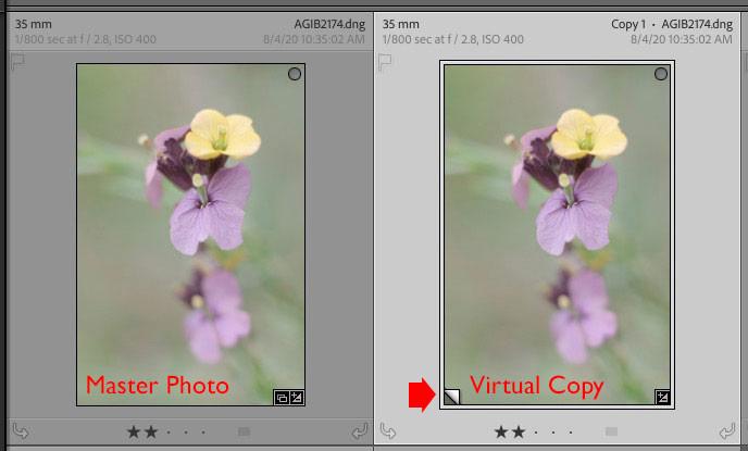 Virtual Copies Lightroom Classic
