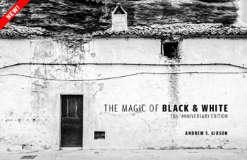 The Magic of Black & White ebook