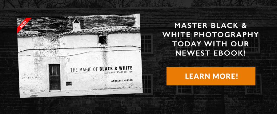 The Magic of Black & White ebook