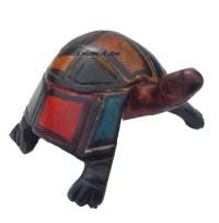 TortoisePrintsSide
