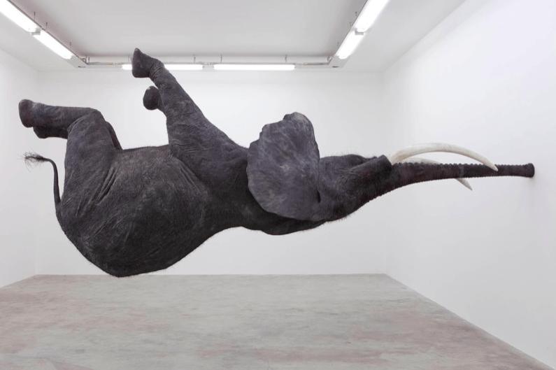 Unbelievable Gravity Defying Life Size Elephant Sculpture