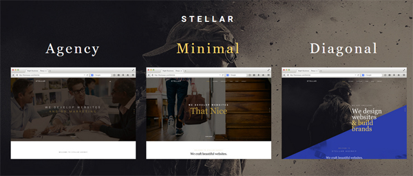 stellar-wordpress-theme