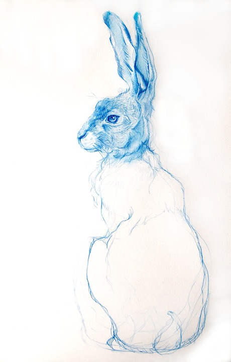 bluehareprint