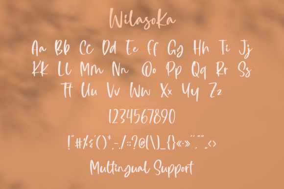 Wilasoka Fonts 14999972 3
