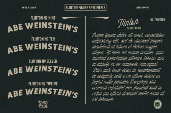 Flinton Family Fonts 18386811 3