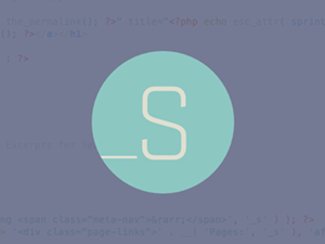 _s Underscores for WordPress
