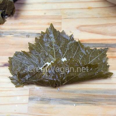 Rellenando hojas de parra