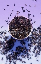 Arroz negro - Berenjenas blancas rellenas de arroz negro #Receta en CreatiVegan.net