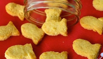 Make your own 4 ingredient cheddar cheese crackers diy 2 ingredient gluten free goldfish crackers solutioingenieria Images