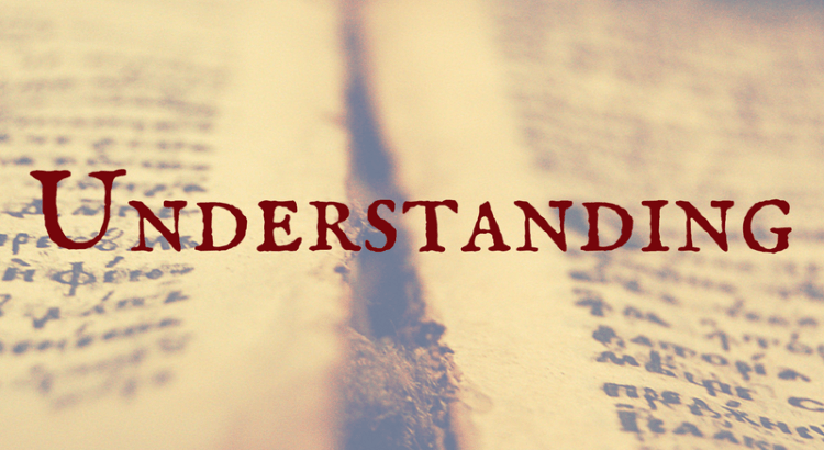 Word Nerd Wednesday Understanding