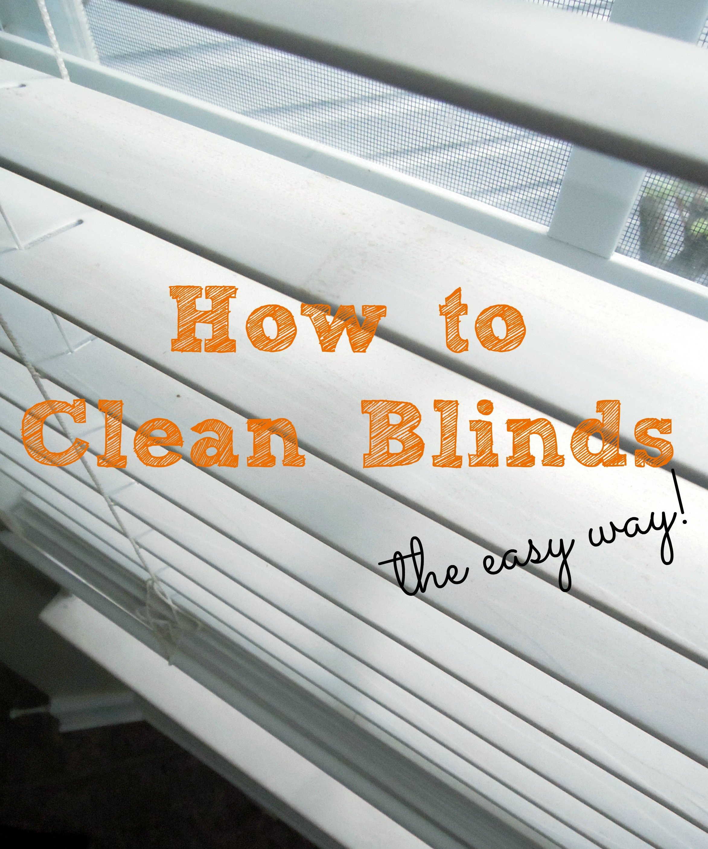 cleaning extraction blinds got process services injection dirty moser ultrasonic best blind our